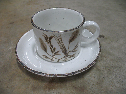 Midwinter Wild Oats Stoneware by Wedgwood Cup & Saucer Set