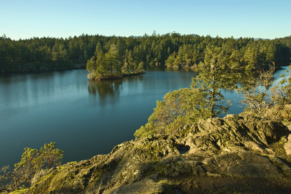 thetis lake island.jpg