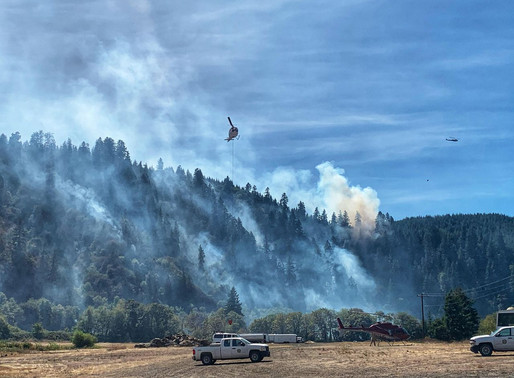 Man arrested on arson allegation in wildfire west of Eugene, deputies say