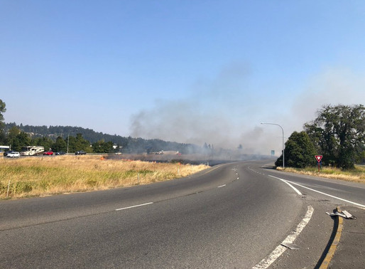 Police arrest Puyallup man for starting large wildfire