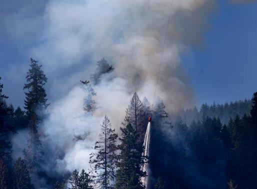 Arson arrest made in Sweet Creek Milepost 2 Fire