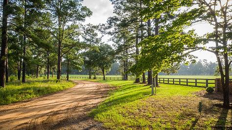 HOME | Fox Creek Plantation