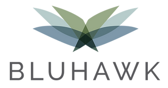 Bluhawk logo.png