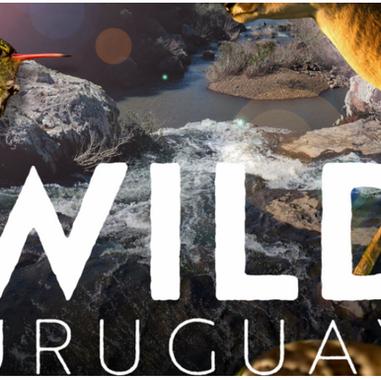 Wild Uruguay