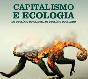 O Capitalismo contra o Meio Ambiente
