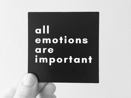 All Emotions are Important