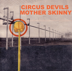 motherskinny front cover