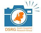 DSRG logo.jpg