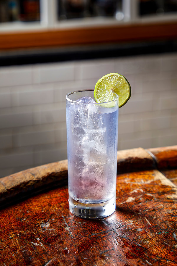 Gin and Tonic G&T Highball