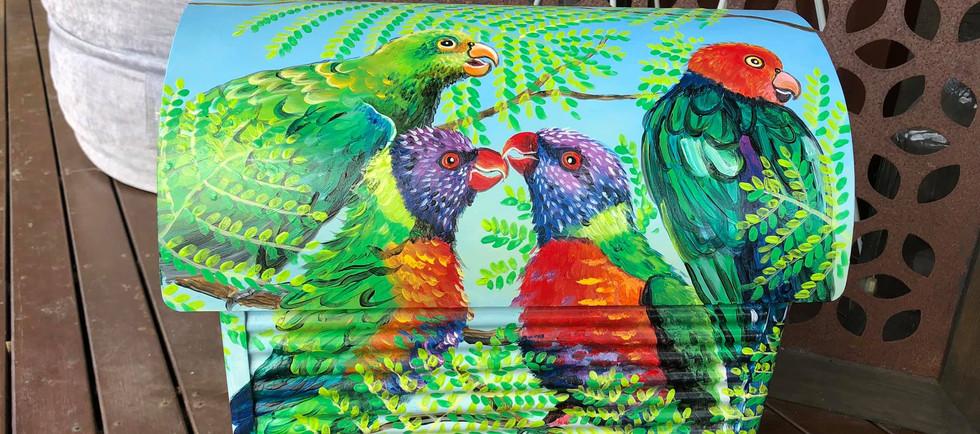 King Parrots & Lorikeets 2.jpg