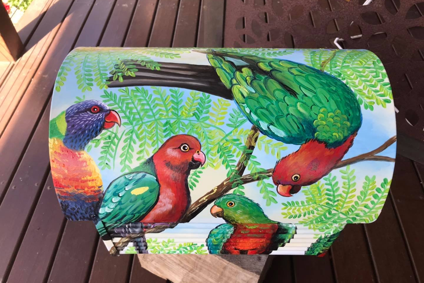 Parrots and lorikeets 5.jpg