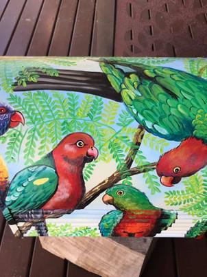 Parrots and lorikeets 5.jpg