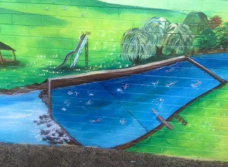 Toilet Block Mural @ Bangalow Parklands
