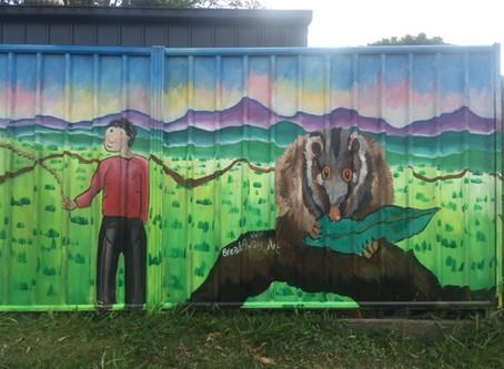 Rain and vertigo at Possum's Pre School