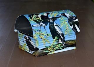 magpies 2.jfif
