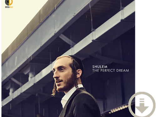 The Perfect Dream - Digital Download