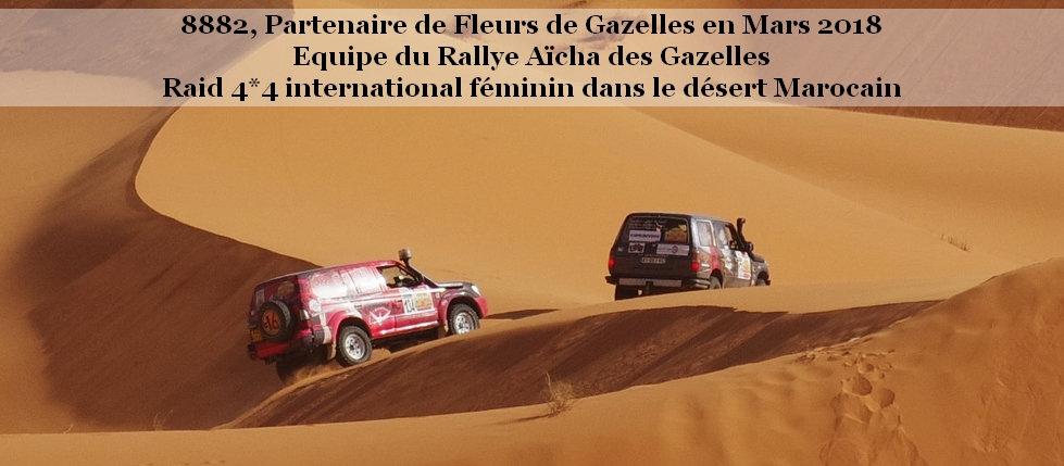 Rallye des Gazelles.jpg