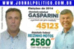 Reizinho_eleições_de_2014_gasparini.jpg
