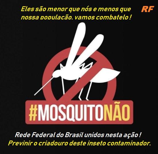 Brasil_inovação_-_combate_ao_inseto