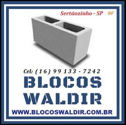 Blocos_Waldir_Sertãozinho_-_SP