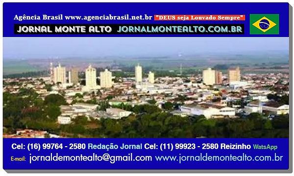 JORNAL MONTE ALTO www.jornalmontealto.co