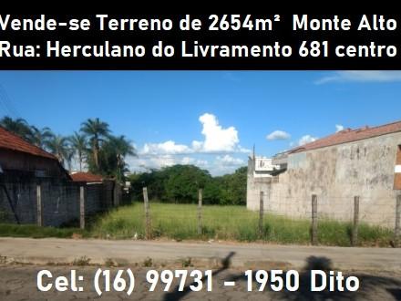 Terreno a venda em Monte Alto - SP