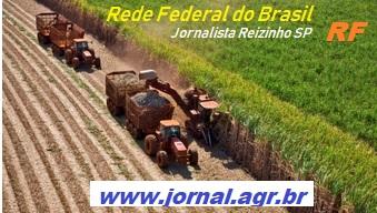 Jornal Agr Br - RF - Colheita mecanizada de cana