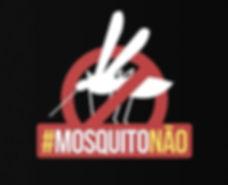 Mosquito da dengue.jpg