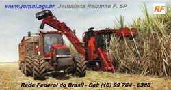 Jornal Agr Br - RF - Colheita mecanizada de cana - Case