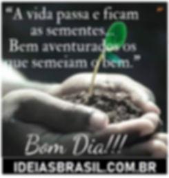 Bom Dia! www.ideiasbrasil.com.br.jpg