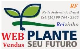 Mkt-RF Plante seu Futuro na Web Vendas