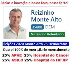 Reizinho 25800 Vereador Voluntário