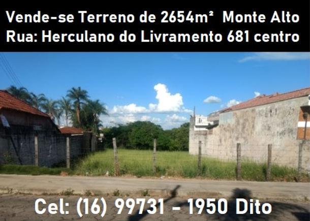 Terreno_a_venda_2654m².jpg