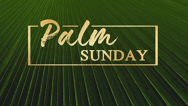 palm sunday slide.jpg