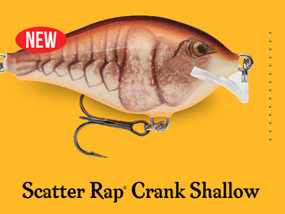 Rapala introduces the Scatter Rap Shallow