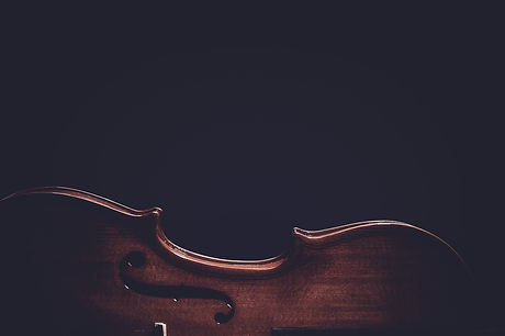 Violin musical instruments of orchestra