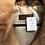 Thumbnail: Palto en Vison