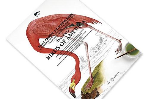 Grand Livre de Coloriage Audubon's Birds of America