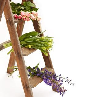 Bloomsville Florist