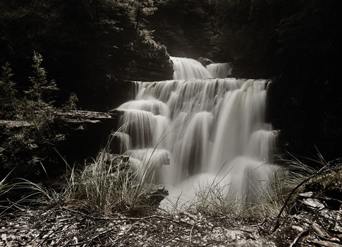 Laurence_S_Water.jpg