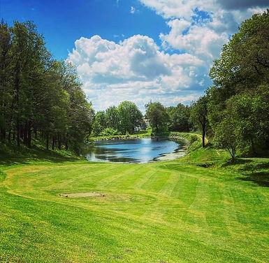 golf d.jpg
