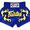 Thumbnail: Fairtex BS0664 Muay Thai Shorts