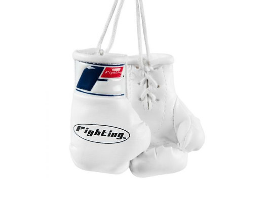 Fighting Mini Boxing Gloves