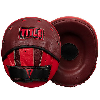 TITLE Boxing Convex Punch Mitt