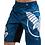 Thumbnail: HAYABUSA Chikara 4 Fight Shorts