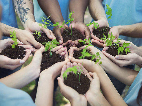 group-of-volunteer-with-sprout-for-growi
