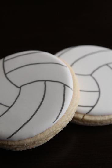 6 Volleyballs ($2 each)