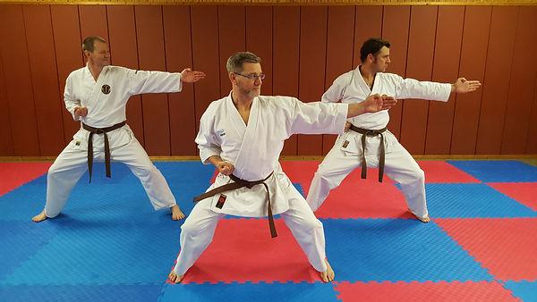 Karate UFC Ellingen