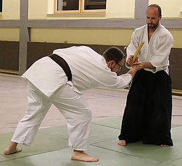 Hanke - Aikido.jpg