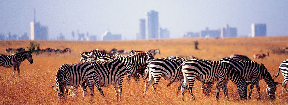 bon plan hôtel Nairobi Kenya avec P2S Travel